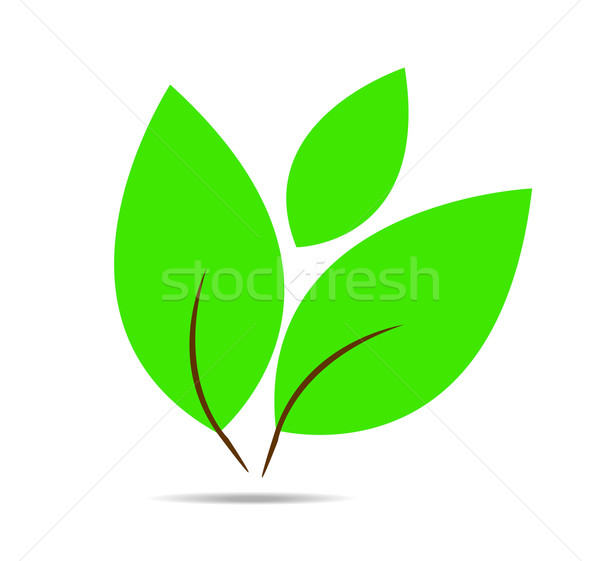 Vetor simples ícone folha verde folha verde Foto stock © X-etra