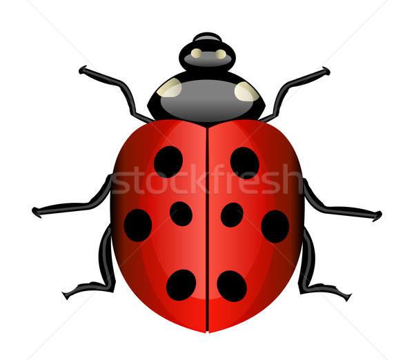 Vector ladybug Stock photo © X-etra