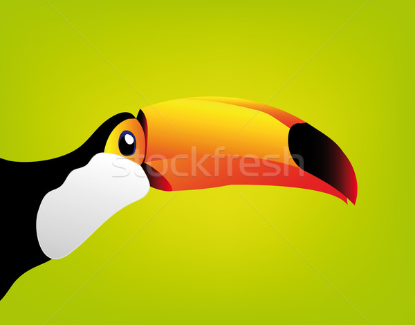 toucan isolated on white background Stock photo © X-etra