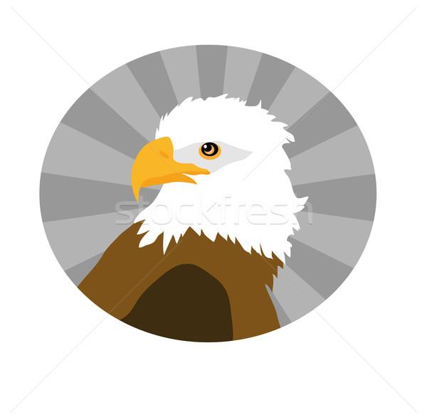 Aquila isolato bianco cerchio segno uccello Foto d'archivio © X-etra