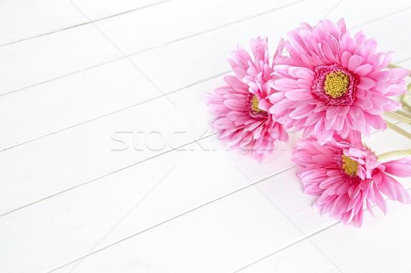 gerbera flower on white wood background Stock photo © xamtiw
