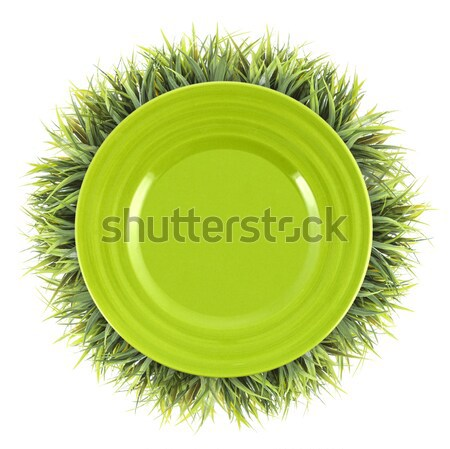 Frame of grass with green plate. Organic food background Stock photo © xamtiw