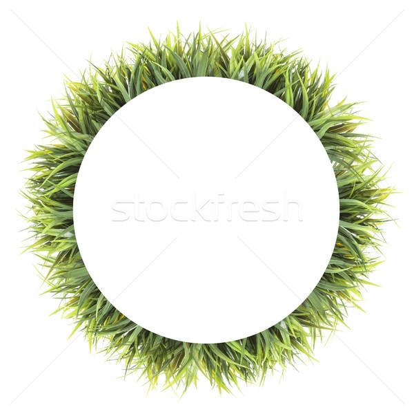 Frame of grass. Isolated on white background Stock photo © xamtiw