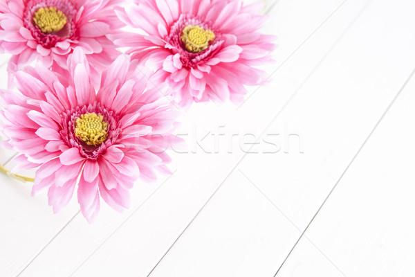 pink gerbera flowers on white background Stock photo © xamtiw