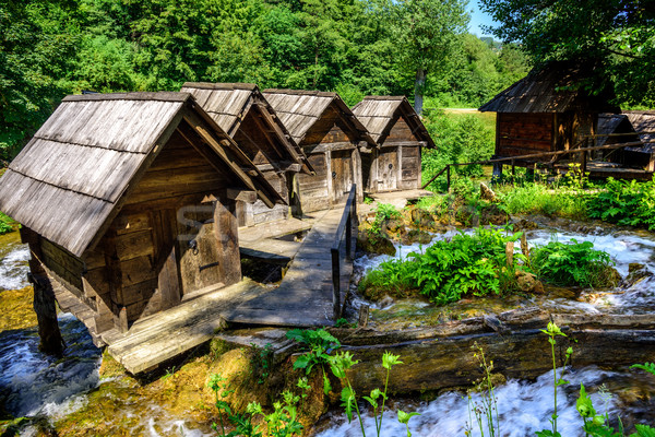 Bosnia Herzegovina histórico forestales naturaleza verde Foto stock © Xantana