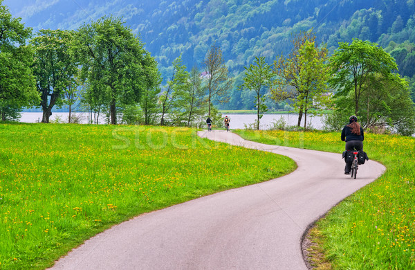 Bicycle track on Danube river in Austria Stock photo © Xantana