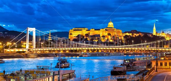 Buda Castle over Danube river, Budapest, Hungary Stock photo © Xantana