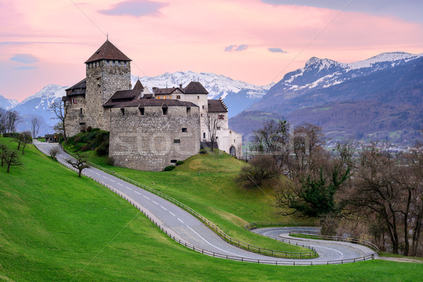 Vaduz Castle, the official residence of the Prince of Liechtenstein Stock photo © Xantana
