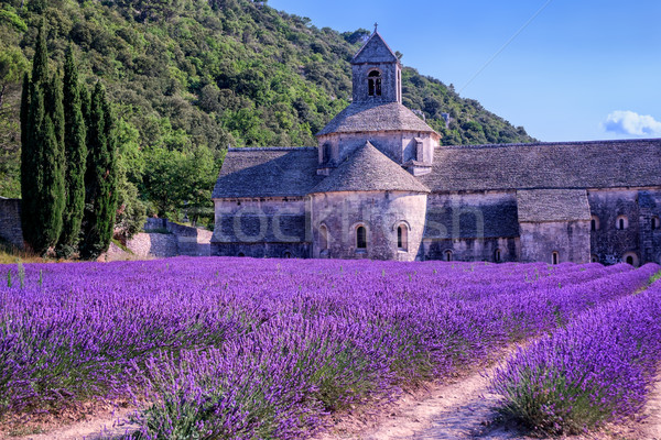 Campi di lavanda monastero Francia fioritura viola meridionale Foto d'archivio © Xantana