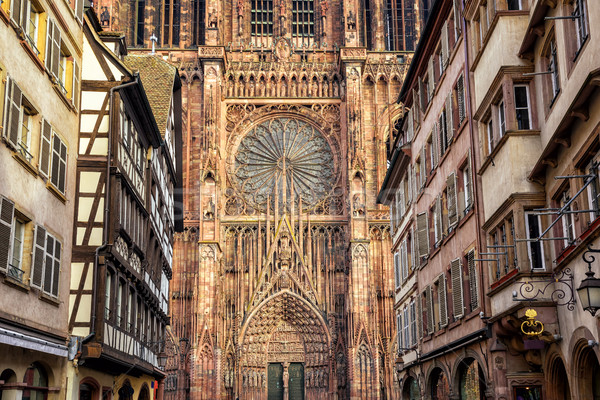Detail view of the Strasbourg cathedral, Alsace, France Stock photo © Xantana