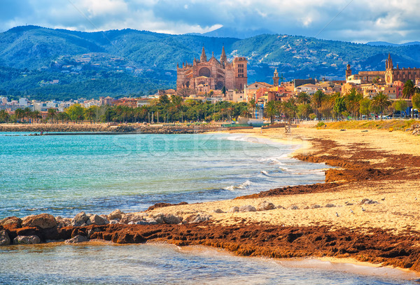 Sand beach in Palma de Mallorca, gothic cathedral in background, Stock photo © Xantana