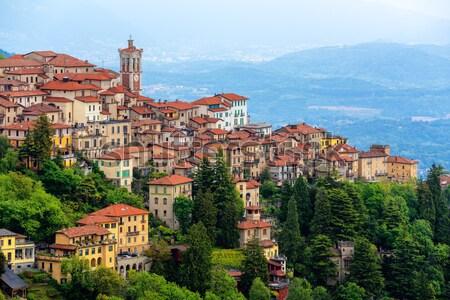 Dolcedo, little italian town in the Maritime Alps mountain in Liguria Stock photo © Xantana
