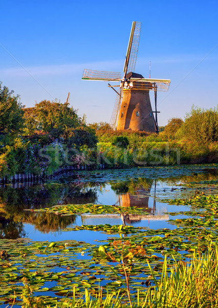 Windmolen holland Nederland meer gedekt water Stockfoto © Xantana