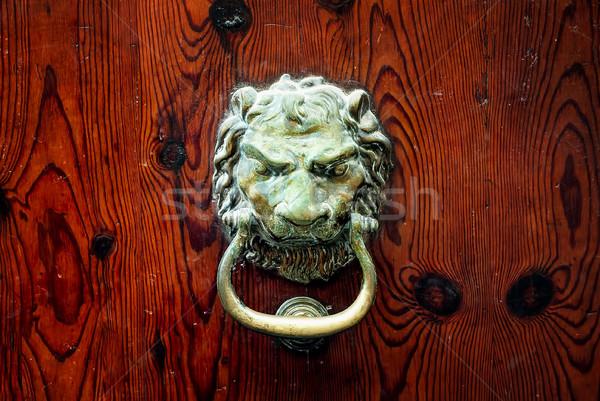 Decorativo bronze leão cabeça porta Foto stock © Xantana