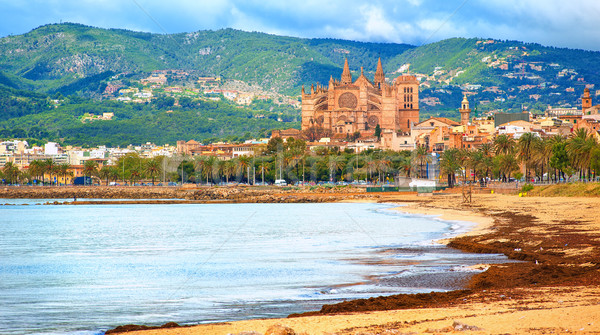 Panoramic view of Palma beach, Majorca, Spain Stock photo © Xantana