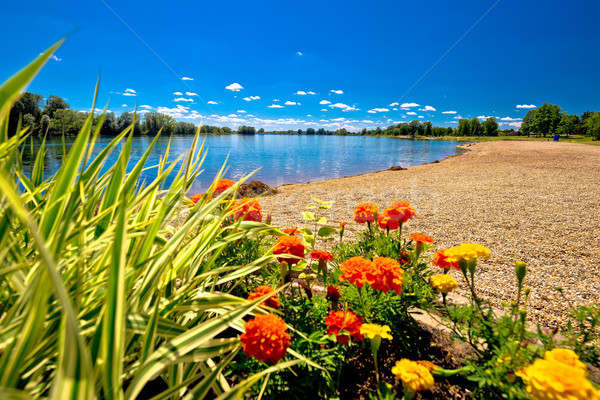 Soderica lake beach and landscape view Stock photo © xbrchx