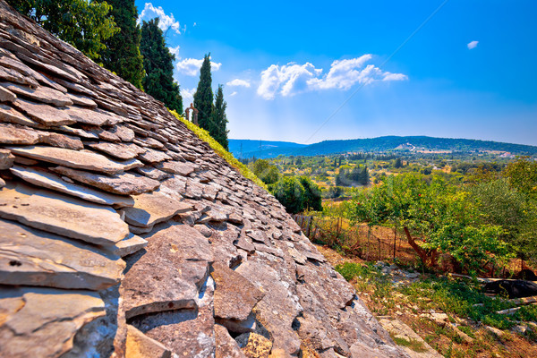 Dalmatian stone roof detail and Skrip village landscape view Stock photo © xbrchx