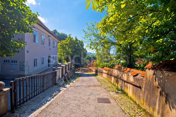Ljubljana old city cobbled upper town walkway Stock photo © xbrchx
