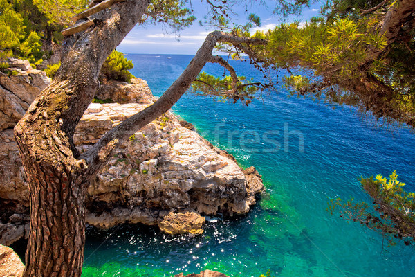 Zlatne Stijene stone beach in Pula view Stock photo © xbrchx