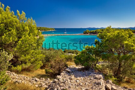 Güzel zümrüt plaj ada doğa deniz Stok fotoğraf © xbrchx