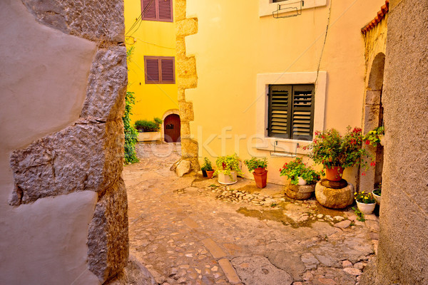 Colorful paved street of old adriatic town Vrbnik Stock photo © xbrchx