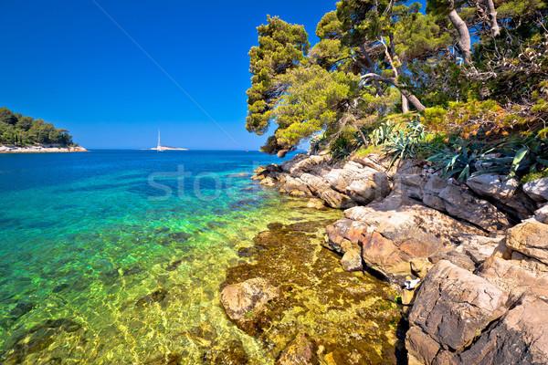 Idyllisch turkoois steen strand zee regio Stockfoto © xbrchx