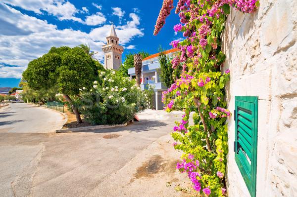 Dalmaçyalı taş mimari renkli çiçekler eski Stok fotoğraf © xbrchx