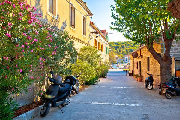 île pierre vue sur la rue région Croatie paysage Photo stock © xbrchx