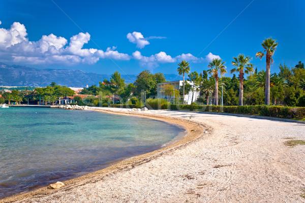 Palm beach in Novalja on Pag island Stock photo © xbrchx