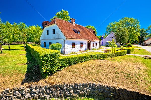 Aldeia nascimento casa ver região grama Foto stock © xbrchx