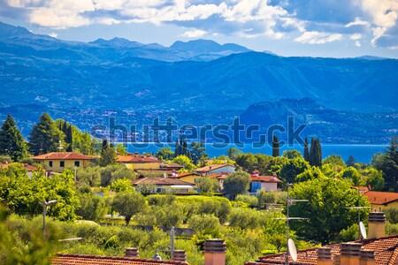 Photo stock: Idyllique · alpine · village · architecture · paysage · vue