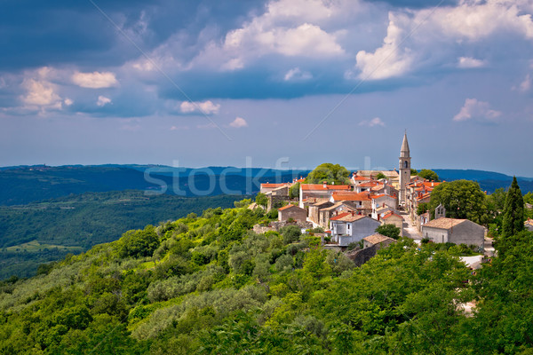 Village of Draguc in green landscape Stock photo © xbrchx