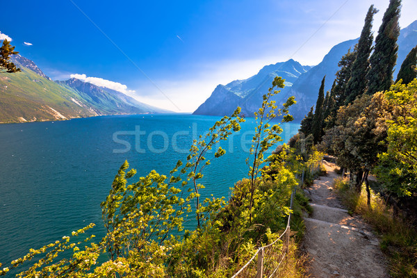 Garda lake view from Monte Brione hill Stock photo © xbrchx