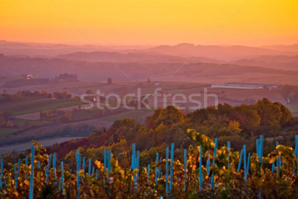 сельскохозяйственный пейзаж Хорватия закат мнение облака Сток-фото © xbrchx