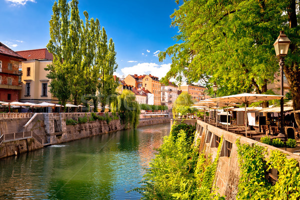 Ljubljana green riverfront promenade walkway summer view Stock photo © xbrchx
