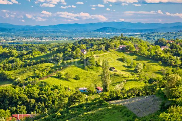 Pittoresque vert collines vue nord Croatie Photo stock © xbrchx