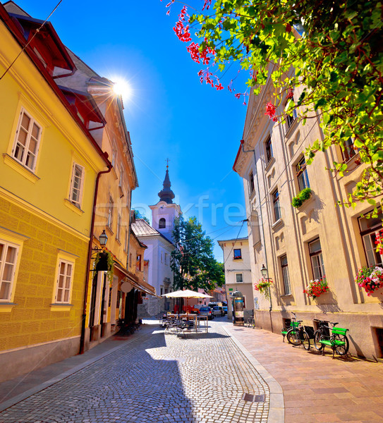 Cobbled old street and church of Ljubljana vertical view Stock photo © xbrchx