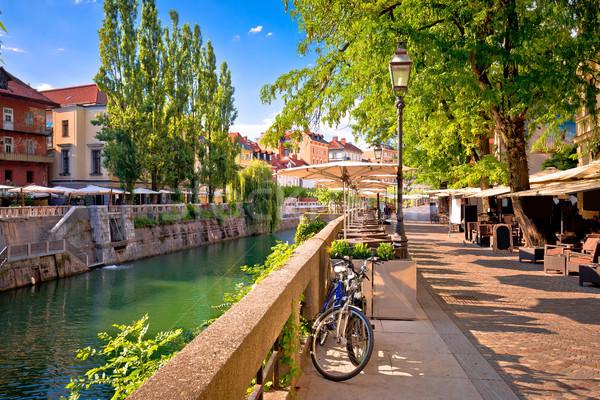 Verde passeio público verão ver edifício paisagem Foto stock © xbrchx