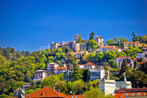 City of Rijeka Trsat sanctuary view Stock photo © xbrchx