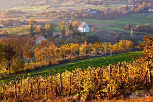 Najaar kerk landelijk heuvels agrarisch Stockfoto © xbrchx
