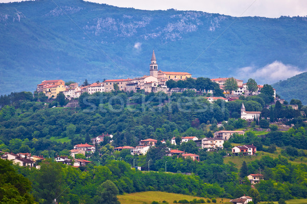 Town of Buzet on green istrian hill Stock photo © xbrchx