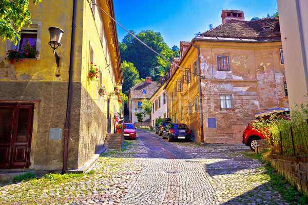 Ljubljana old city cobbled upper town walkway Stock photo © xbrchx