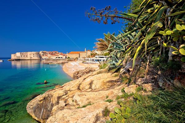 Történelmi város Dubrovnik tengerpart kilátás régió Stock fotó © xbrchx
