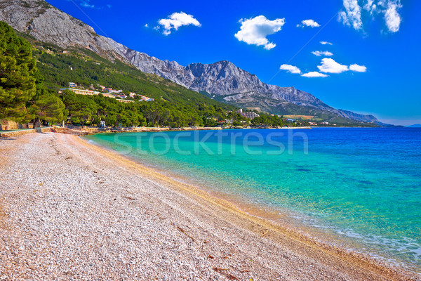 Idyllic beach Punta Rata in Brela aerial view Stock photo © xbrchx