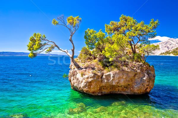 идиллический пляж воды морем горные Palm Сток-фото © xbrchx