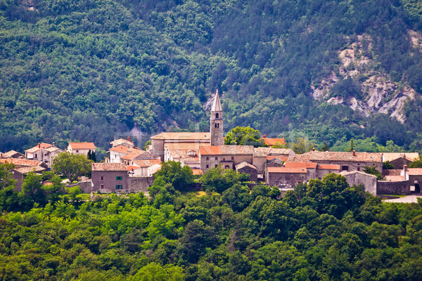 Village of Roc in istrian inland Stock photo © xbrchx