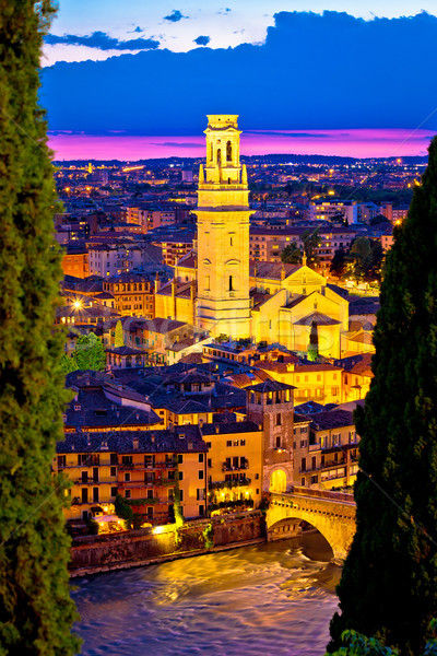 Verona towers and rooftops evening vertical view Stock photo © xbrchx