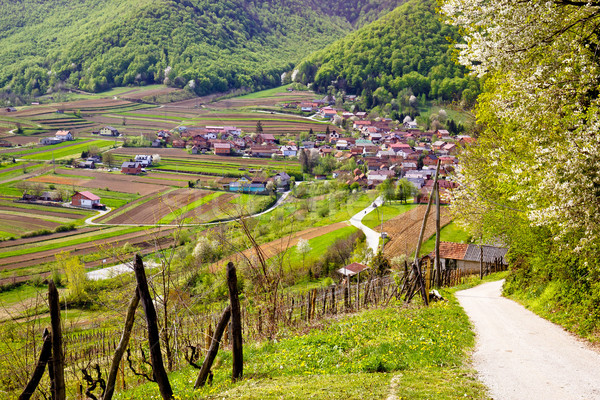 Idyllic mountain village of Prigorec Stock photo © xbrchx