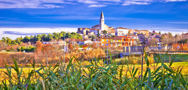 Istrian town of Visnjan panoramic colorful view Stock photo © xbrchx