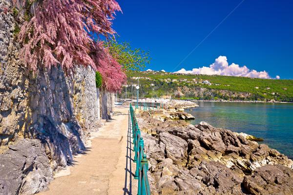 Lungomare coast famous walkway in Opatija Stock photo © xbrchx